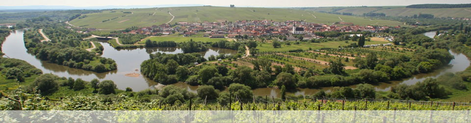 Contact page image - Frankonian wine-growing valley view