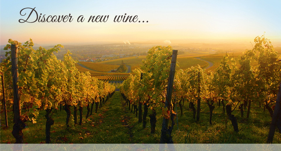 Discover a new wine